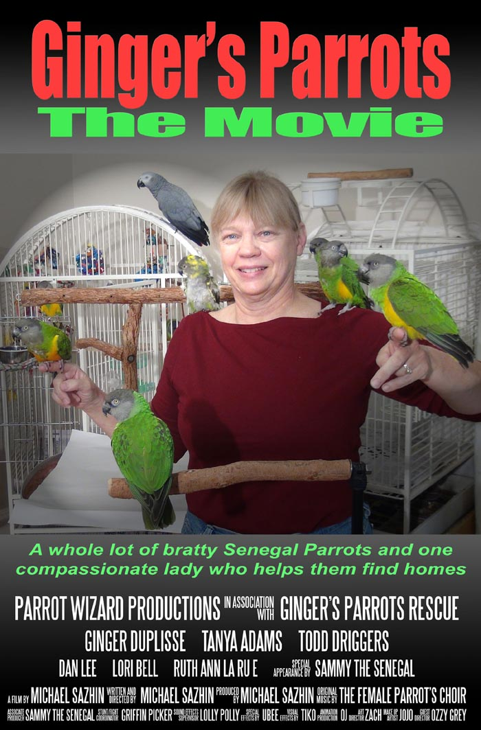 Ginger's Parrots Movie Poster