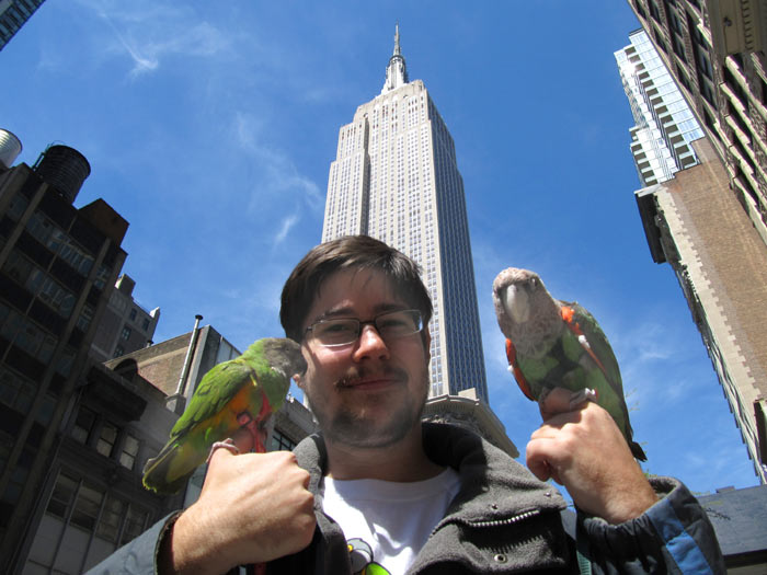 Empire State Building Parrots
