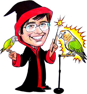 Parrot Wizard Trainer