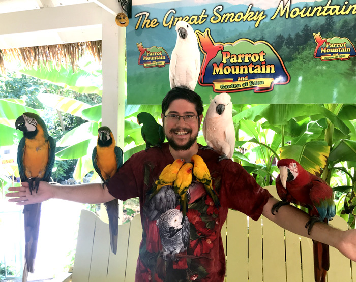 Holding lots of parrots at Parrot Mountain