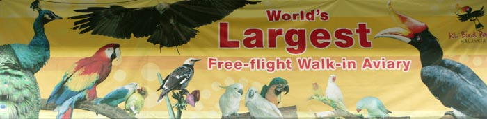 World's Largest Free Flight Walk In Aviary