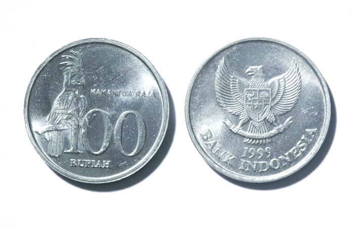 Palm Cockatoo Coin