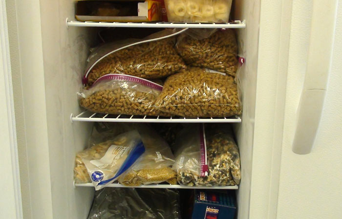 Bird Food in Freezer