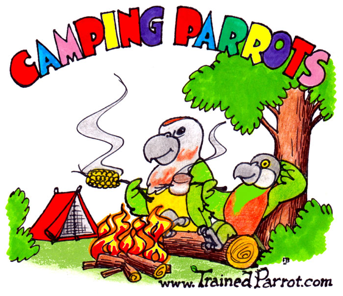 Camping Parrots Joke Cartoon