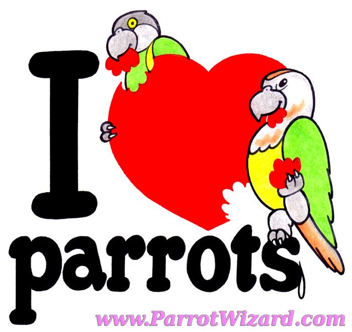 I Heart Parrots