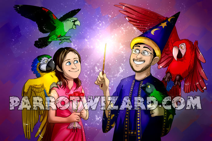 Parrot Wizard's Princess
