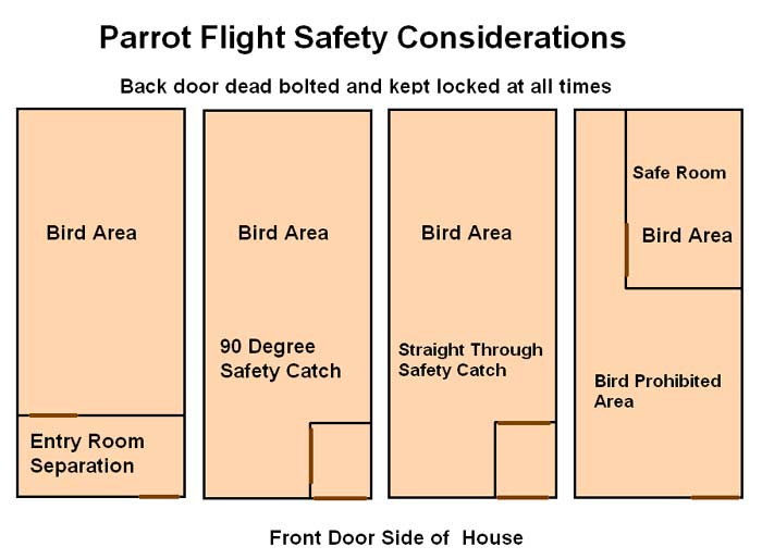 Parrot Flight Safety