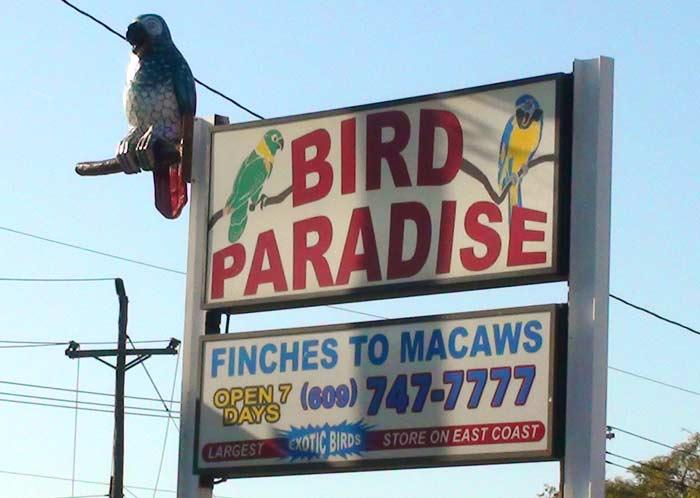 Bird Paradise Sign