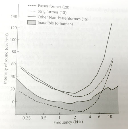 Bird Hearing Chart