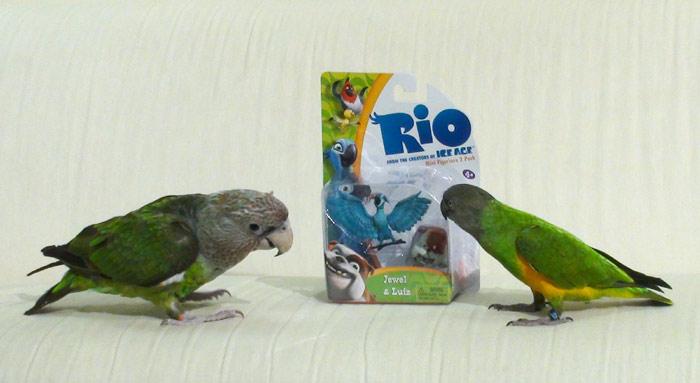 Rio Figurine Toys