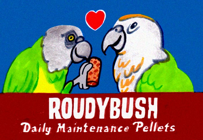 Roudybush Cartoon