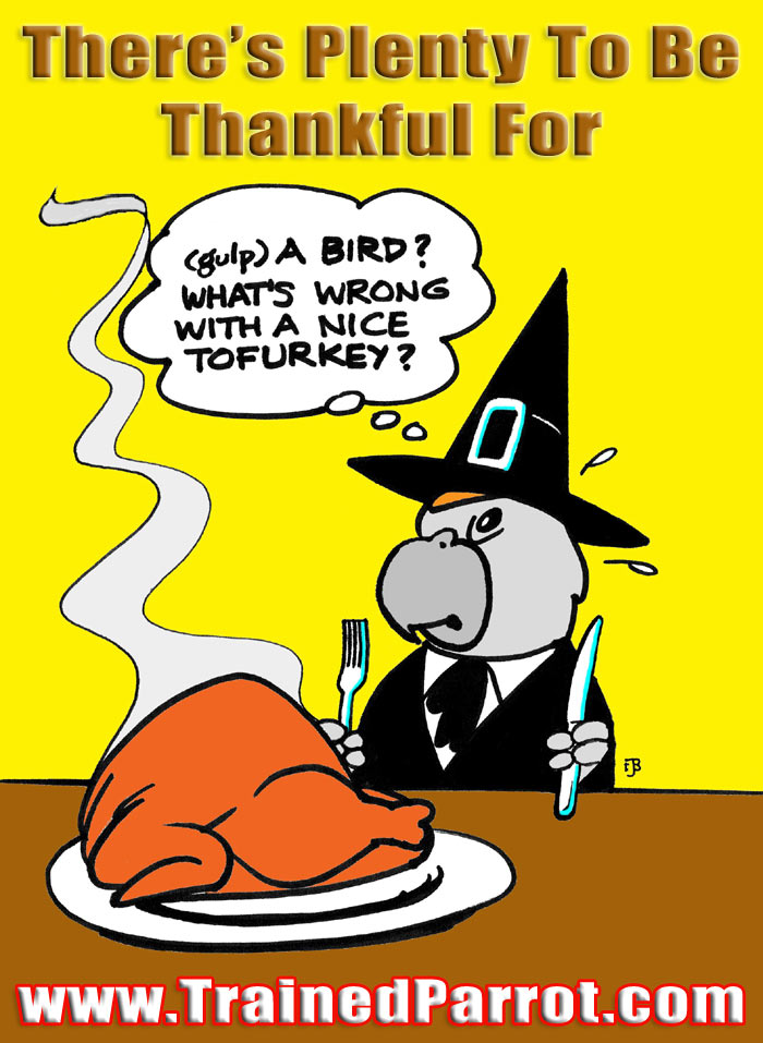 Thanksgiving Pilgrim Parrot Joke Cartoon Picture