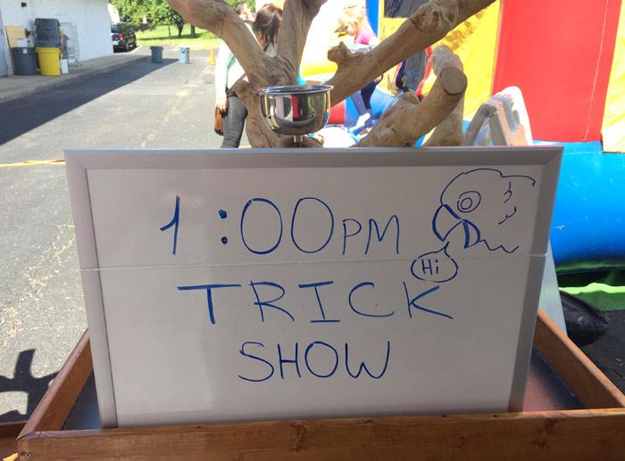 Parrot Tricks Show