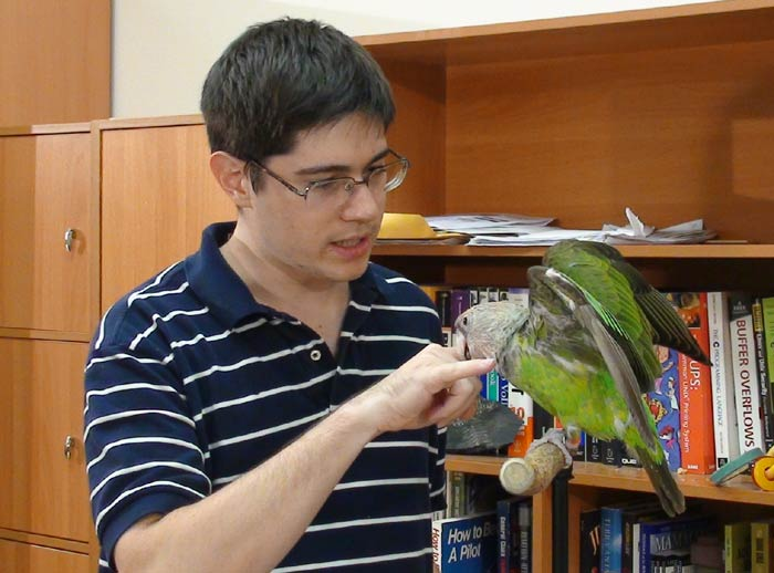 Picture of Parrot Opening Wings