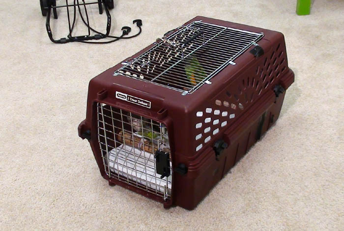 Double Parrot Winter Travel Carrier